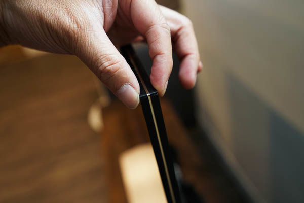 Sony Brivia 4K HDR電視(55X9300D)-192