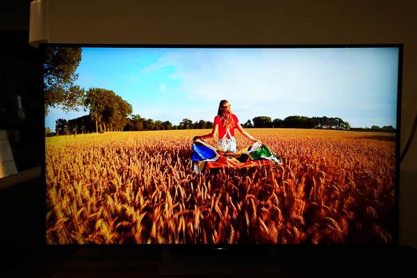 Sony Brivia 4K HDR電視(55X9300D)-249