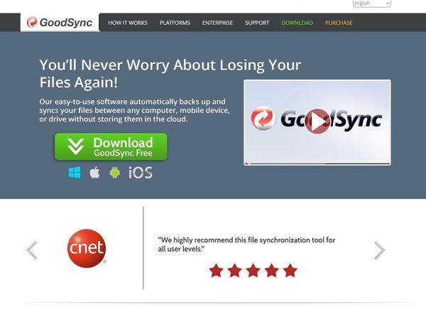 GoodSync WEBSITE.jpg